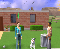 Newbie Family (The Sims 2 Pets console)