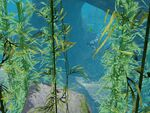 Les Sims 3 Île de Rêve 45
