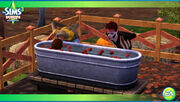 TS3Seasons Applebobbing2