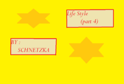 Life Style (part 4)