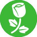 TS4RGS Icon