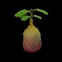 Fruta prohibida brote