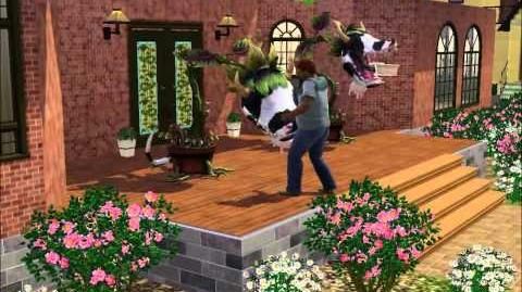 Laganaphyllis Simnovorii (Les Sims 3) en action