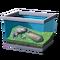 Лягушка с солнечными волнообразными полосками