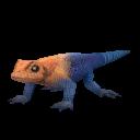 File:Agama Lizard.png
