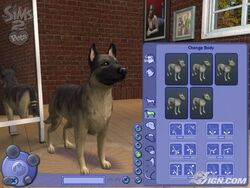 The-sims-2-pets--20060822013004074 640w-1-