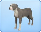File:Breed-l08.png