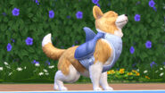 The Sims 4 Cats & Dogs Screenshot 09