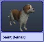 Saint Bernard (Sims 2)