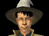 Lee Wizard