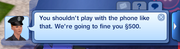 Sims 3 Police Fine