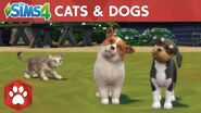 The Sims 4 Cats & Dogs Official Launch Trailer