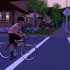 Homero en su bicicleta