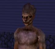 Loup-garou (Les Sims 2)