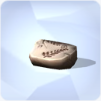 Empreinte de plante fossilisée