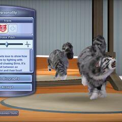 Imagen del juego de las versiones para Xbox 360 y PlayStation 3