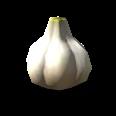 GarlicTS4