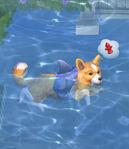 Les Sims 4 Chiens et Chats 11