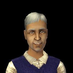 Simis Bachelor (The Sims 2)