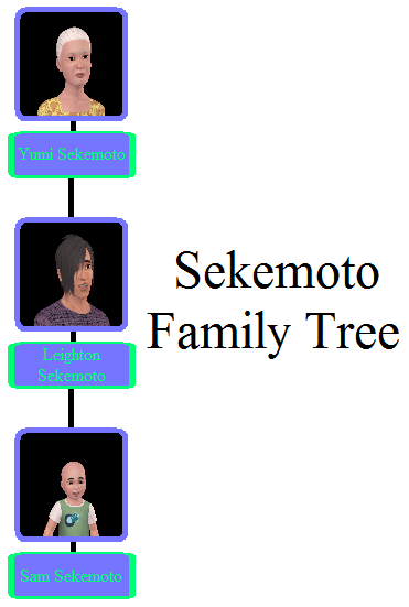 Sekemoto Family Tree