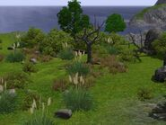 The Sims 3 Barnacle Bay Screenshot 01