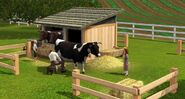 Cow slider