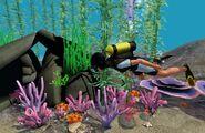 Scuba diving island paradise