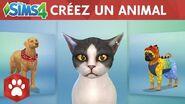 Les Sims 4 Chiens et Chats bande-annonce officielle Créer un animal