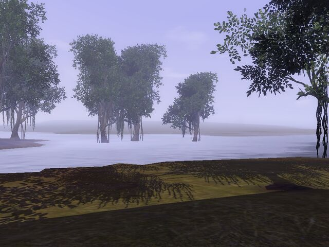 File:Twinbrook swamp.jpg