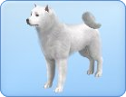 File:Breed-l06.png