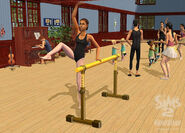 TS2FT Gallery 7