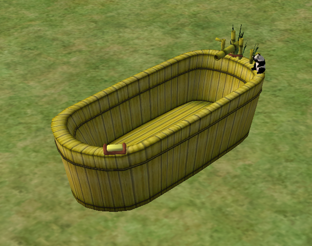 File:Ts2 the black and white bare bath.png