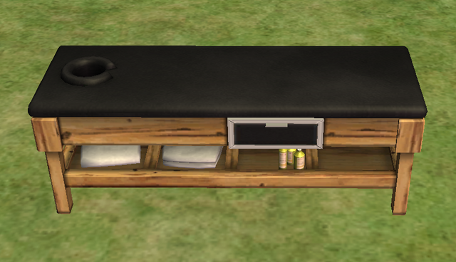 File:Ts2 soft'n'tender massage table.png