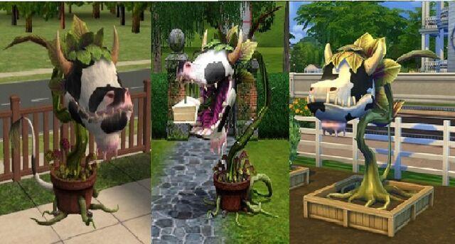 File:All Cowplants.jpg