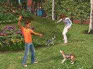 The Sims 2 Pets Screenshot 01