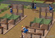 Sims2Cheerleaders