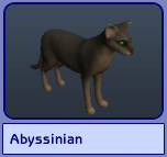Abyssinian (Sims 2)