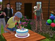 Birthday sims3