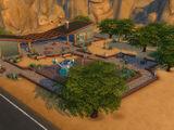 Парк «Пустынные цветы»