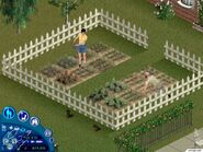 The Sims Unleashed 02