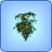 Arbusto1
