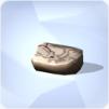 Monstre marin fossilisé