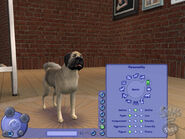 The Sims 2 Pets Screenshot 15