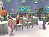 Sim birthday party