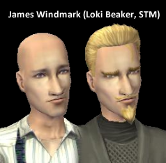 STM James Windmark Loki Beaker
