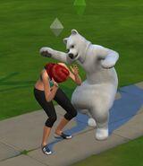 OR Polar sims4