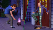 Sims-Generations-Flaming-Bag