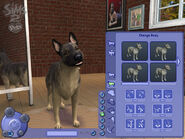 The Sims 2 Pets Screenshot 16