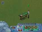 The Sims Online UI Design 5