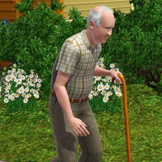 Los Sims ancianos pueden usar bastones.
